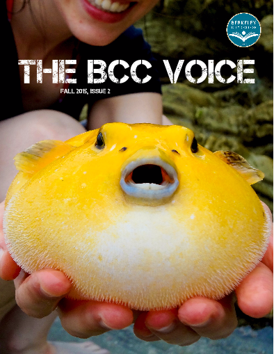 cover issue 2